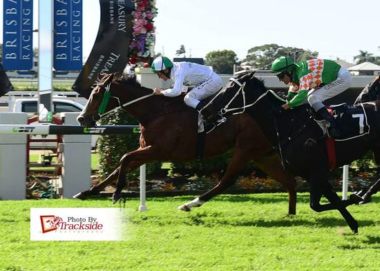 The Winners Are Stacking Up For Laming Racing