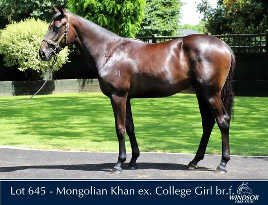 Mongolian Khan X College Girl