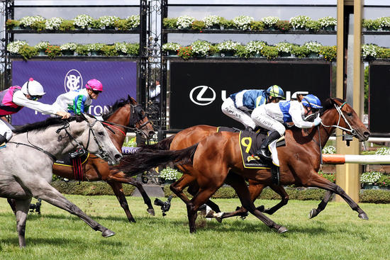 Laming Racing The Month Of February - Winners In Review.