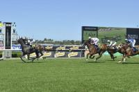 PROVEN THOROUGHBREDS KICKS OFF 2015 IN STYLE