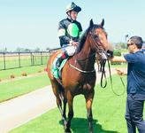 GREENSPAN - A stayer of the future!