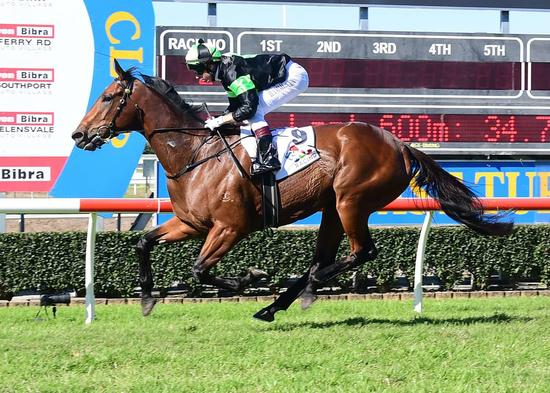 Further boost for QLD racing industry