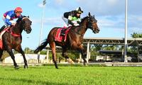 ​BEAU DANCER a maiden no more!