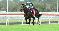​SCALLOPINI back to winning ways