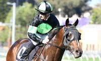 Sesar reigns supreme in Roman Consul Stakes