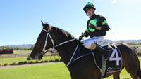 TAHSIN goes back to back in Mudgee Cup!