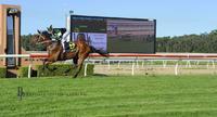 ROMALETTE a dominant maiden winner