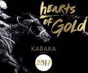 MITCH FREEDMAN RACING AT 2017 NZ KARAKA SALES
