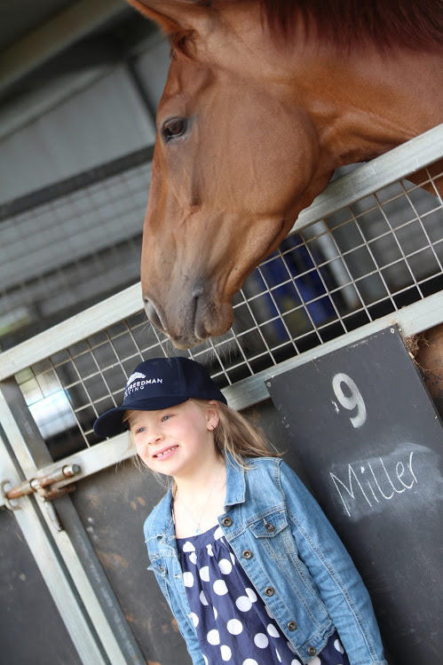 Annual Stable Open Day