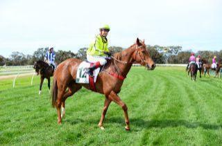 Stylish win to ATB's Choisir mare Stylish Lily at Warracknabeal