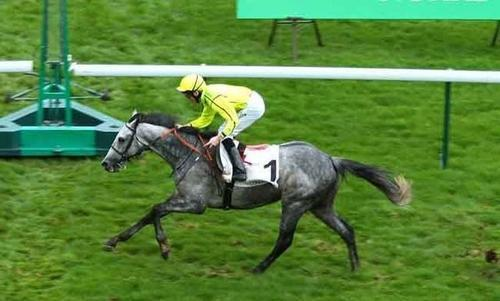Enfin un win for Tac De Boistron at Chester in the UK