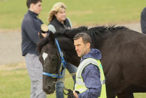 ATB's Dandino arives in Australia and lands at Werribee Quarantine Centre