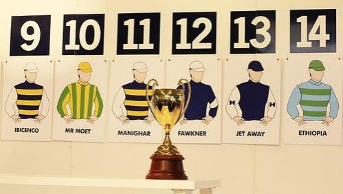 ATB's Dandino draws barrier 19 for 2013 Caulfield Cup on Saturday