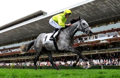 ATB's Tac De Boistron smashes his rivals in Group 1 Prix Royal Oak at Longchamp overnight