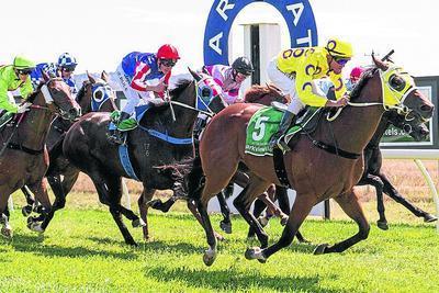 Racing Victoria say Ararat meeting abandonment today is unacceptable