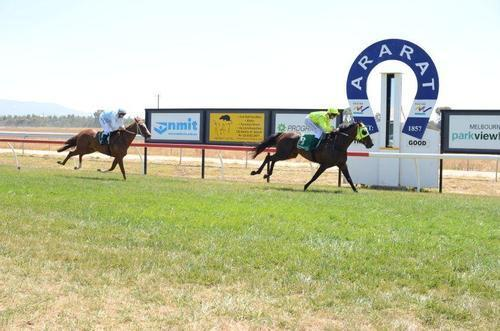 ATB's Miss Adelaide leads all the way at Ararat