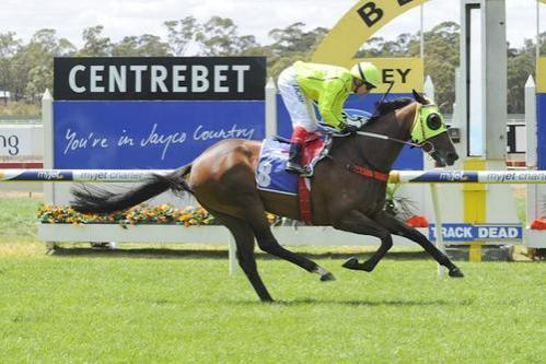 Ticket To Toorak, Host Me & Falago make it three winners for the week for ATB