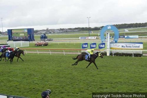 Shiny Buttons Smashes The Field On Day One Of The Bool