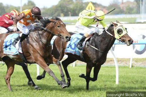 Princess Hussey Toughs It Out To Win Her Maiden