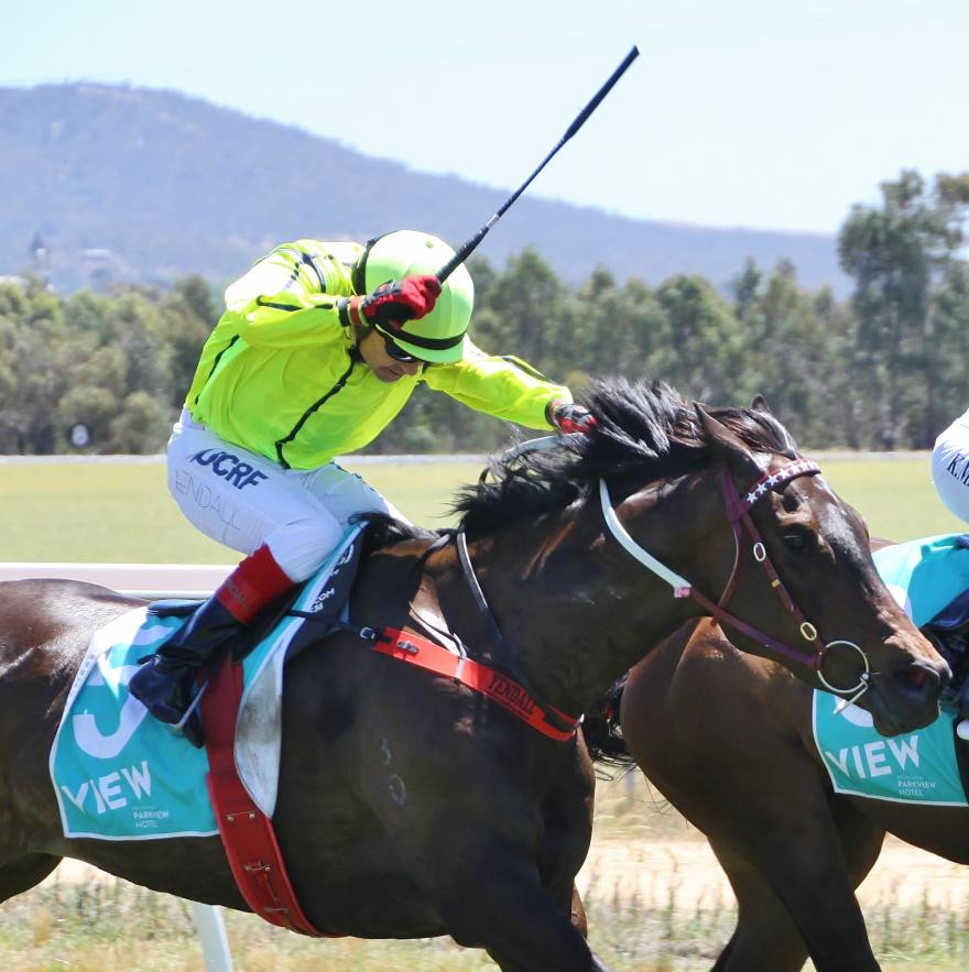 Racing Awards to Australian Thoroughbred Bloodstock Trainers & Jockey