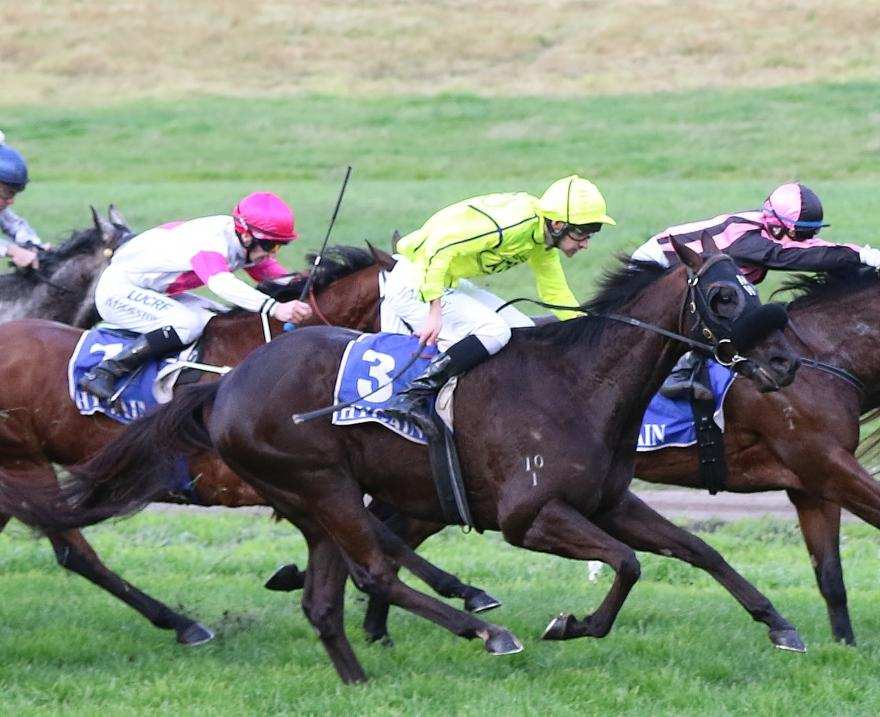 Australian Thoroughbred Bloodstock Weekly News from Casterton