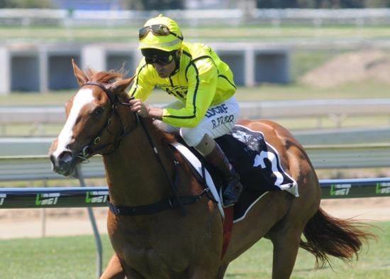 She's Our Star Doomben 1.jpg