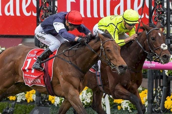 Australian Thoroughbred Bloodstock can make your Melbourne Cup dream come true