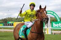 Taiyoo - More than a Racehorse!