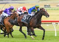 SOUTHERN FRANCE REDEEMS IN ZIPPING CLASSIC
