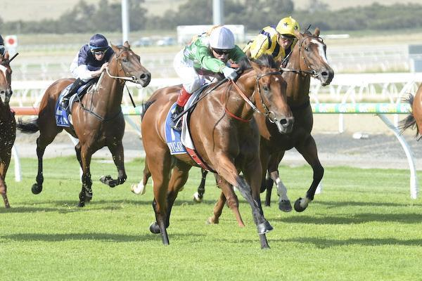 Cranbourne-Preview march 4.jpg
