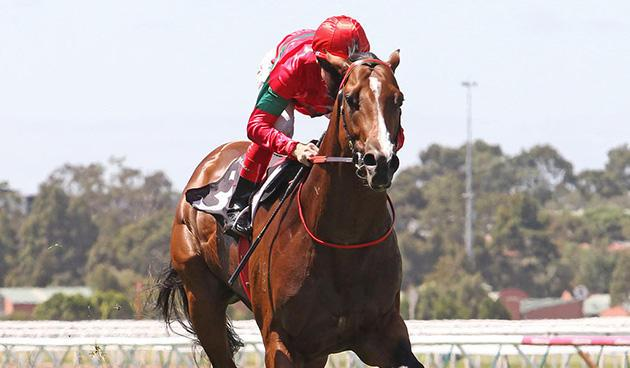 Randwick Guineas Day -preview march 5.jpg