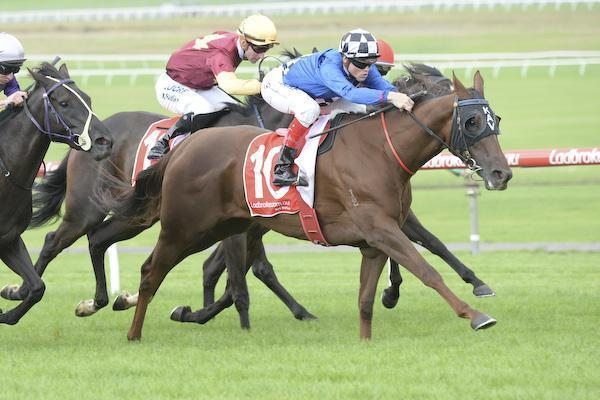 Flemington Newmarket Day Preview march12.jpg