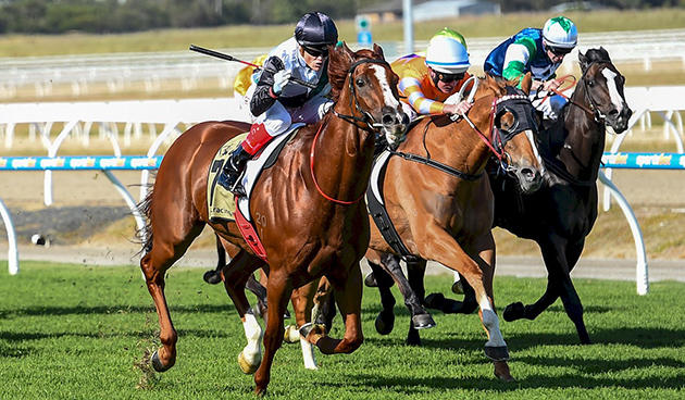 Hayes, Williams dominate Pakenham Cup Day