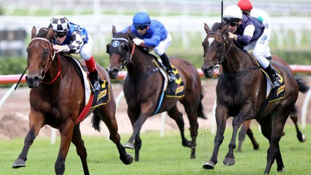 Big Duke races into Sydney Cup favouritism after Craig Williams overcomes availability doubts
