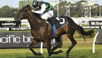Group 1s addictive for Williams