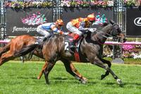 Flemington thrill for Williams family