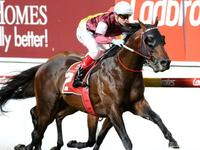 Hellbent wins William Reid Stakes at Moonee Valley
