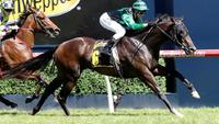 Noblet chasing the Cash again with Super in UBET Classic 2018
