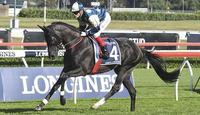Ambitious favourite to break drought