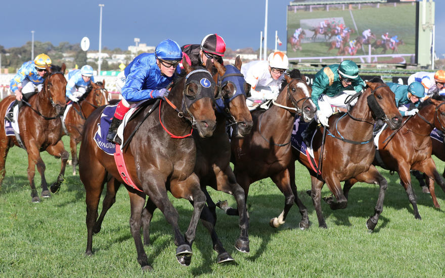 Encryption and blinkers a Flemington match