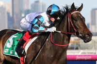 Talented filly Amphitrite wins Group 2 Edward Manifold Stakes
