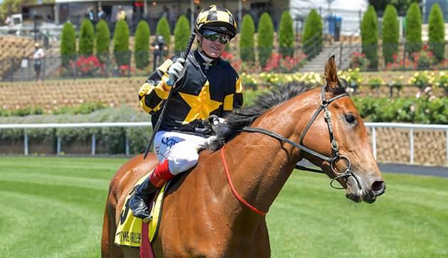 Behemoth - Moonee Valley.JPG
