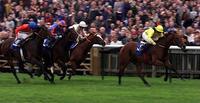 Dewhurst winner and Derby third Tobougg dies at stud aged 20