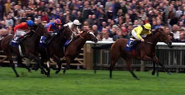 Dewhurst winner and Derby third Tobougg dies at stud aged 20