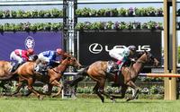 Pure Scot lands her first Flemington win