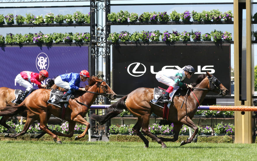 Pure Scot lands her first Flemington win