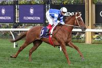 Gytrash far too good in Creswick Stakes