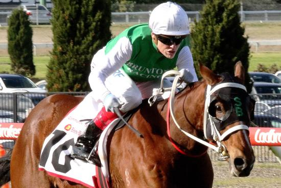 The Inevitable proved his class racing to a commanding win in the Listed Bendigo