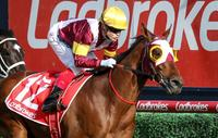 Fierce Impact wins Group 1 Toorak Handicap
