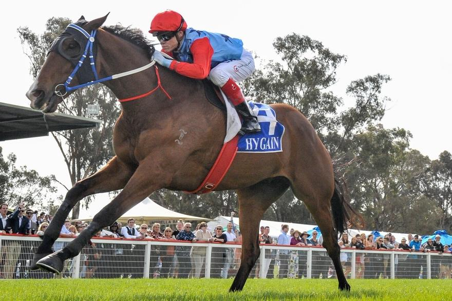 Flemington Group Ones on radar for Seymour Cup winner